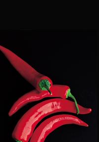 Capsicum for FreeBSD » ADMIN Magazine